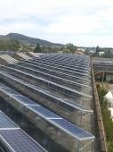 Energie Regenerabila - 10006 Energie Regenerabila