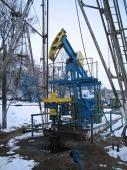Petrol - 10003 Petrol