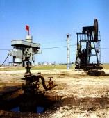 Petrol - 10004 Petrol